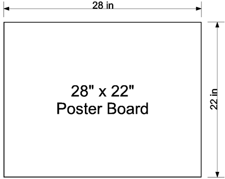 Average size of poster board
